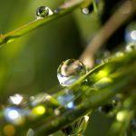 Танец капельки с дождём.