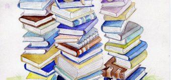 Книжные лабиринты.