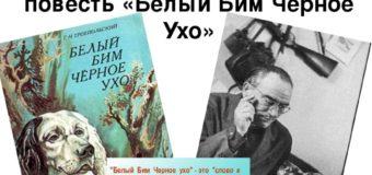 Час раскрытой книги: Г.Н. Троепольский «Белый Бим Чёрное ухо»